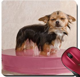 Liili Suqare Mousepad 8x8 Inch Mouse Pads Mat Relaxed chihuahua puppy taking a bath standing in pink bathtub IMAGE ID 11693912