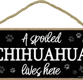 A Spoiled Chihuahua Lives Here - 5 x 10 inch Hanging, Wall Art, Decorative Wood Sign Home Decor
