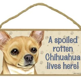 """Dog Lovers' Decorative Wooden Wall Plaque Sign 10' x 5"""" - A Spoiled Rotten Chihuahua (Tan) Lives Here!"""