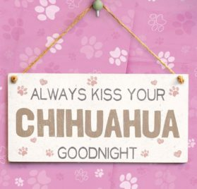 """Meijiafei Always Kiss Your Chihuahua Goodnight - Beautiful Home Accessory Gift Sign For Chihuahua Dog Owners 10""""x5"""" 2"""