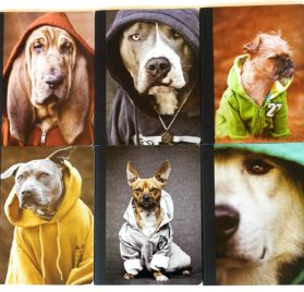 Dogz in the Hood Wide Ruled Composition Notebook 6 Item Bundle