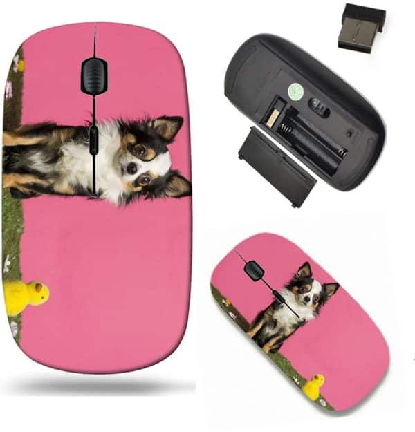 Liili Wireless Mouse Travel 2.4G Wireless Mice with USB Receiver, Click with 1000 DPI for notebook, pc, laptop, computer, mac book ID- 26674182 Chihuahua sitting in an easter scenery