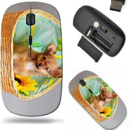 Liili Wireless Mouse Travel 2.4G Wireless Mice with USB Receiver, Click with 1000 DPI for notebook, pc, laptop, computer, mac book ID- 27995992 a little puppy of chihuahua on grey background