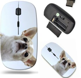 Liili Wireless Mouse Travel 2.4G Wireless Mice with USB Receiver, Click with 1000 DPI for notebook, pc, laptop, computer, mac book IMAGE ID- 16559529