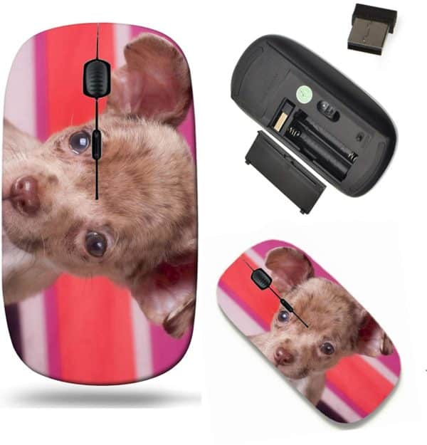 Liili Wireless Mouse Travel 2.4G Wireless Mice with USB Receiver, Click with 1000 DPI for notebook, pc, laptop, computer, mac book IMAGE ID- 18074147 Chihuahua puppy