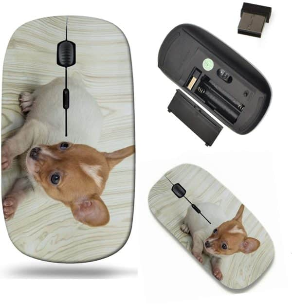 Liili Wireless Mouse Travel 2.4G Wireless Mice with USB Receiver, Click with 1000 DPI for notebook, pc, laptop, computer, mac book IMAGE ID- 36069423 Chihuahua puppy posing in the wooden background