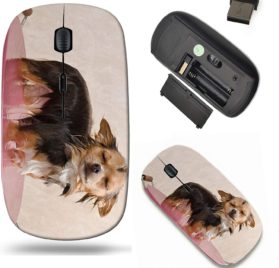 Liili Wireless Mouse Travel 2.4G Wireless Mice with USB Receiver, Click with 1000 DPI for notebook, pc, laptop, computer, mac book Relaxed chihuahua puppy taking a bath standing