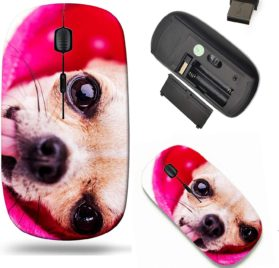 Liili Wireless Mouse Travel 2.4G Wireless Mice with USB Receiver, Click with 1000 DPI for notebook, pc, laptop, computer, mac book a close up of a cute chihuahuas face with big shiney eyes