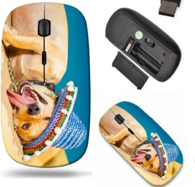 Liili Wireless Mouse Travel 2.4G Wireless Mice with USB Receiver, Click with 1000 DPI for notebook, pc, laptop, computer, mac book drunk chihuahua dog