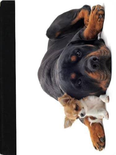 Rikki Knight Rottweiler and Chihuahua Faux Suede Notebook Binder Portfolio (RK-notebook410)