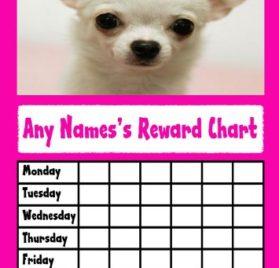 Chihuahua Dog Star Sticker Reward Chart