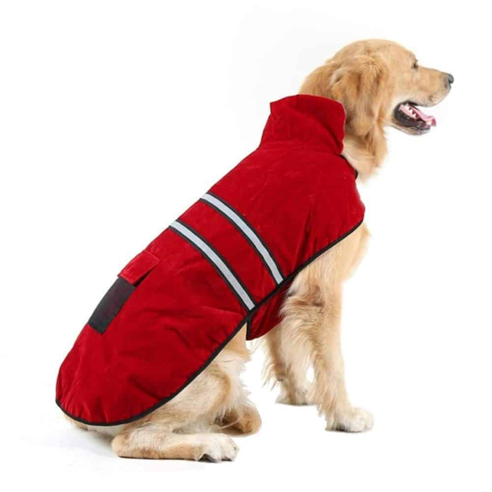 Hiado Dog Coat With Harness Hole And Reflective Strip For