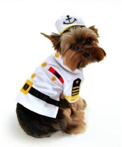 Sea Captain Dog Costume Size: X-Small