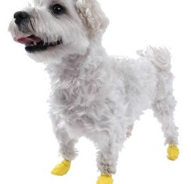 Dog Boots Pawz Set of 12 XXSmall 2