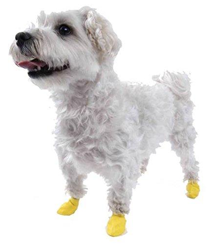 Dog Boots Pawz Set of 12 XXSmall 2