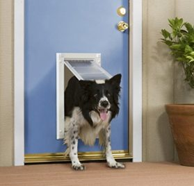 Patio Pacific - Endura Flap Door Mount pet door-2