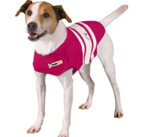 Thundershirt Dog Shirt
