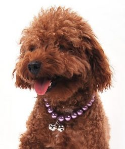 Alfie Couture Designer Pet Jewelry - Jinny Pearl Necklace with Bells for Dogs and Cats-8