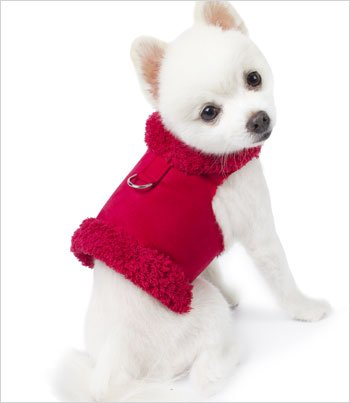 "Bowzer Dog Harness Coat by Susan Lanci - Red - XXS (8""-10"" girth) - 1"