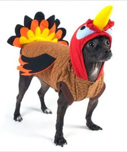 """Turkey Costume for Dogs - Size 5 (14"""" l x 18.5"""" - 20.5"""" g) - 1"""