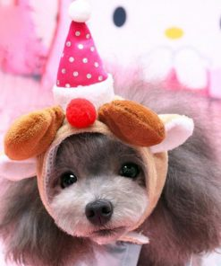 Alfie Pet by Petoga Couture - Qeno Deer Hat Party Costume (for Small Dogs & Cats) - Color: Brown - 1