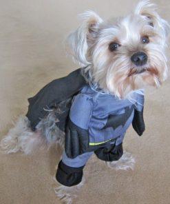 Alfie Pet by Petoga Couture - Superhero Costume Batman - 2