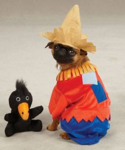 Zack & Zoey Scarecrow Pet Costume - Red - 2