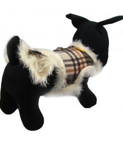 Alfie Couture Designer Pet Accessory - Keri Harness Vest and Leash Set - 3