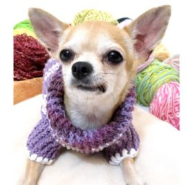 Warm Dog Sweater Soft Purple Pastel Colorful Pet Clothes Cotton Knit Cat Puppy Clothing Handmade By Myknitt Dk864 - Free Shipping - 4