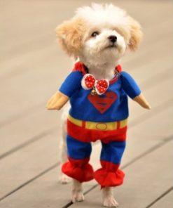 Alfie Pet by Petoga Couture - Superhero Costume Superman - 5