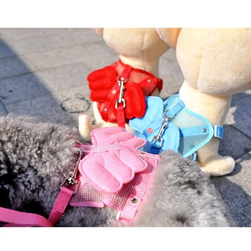 Alfie Couture Designer Pet Accessory - Angel Wing Harness with Leash 6