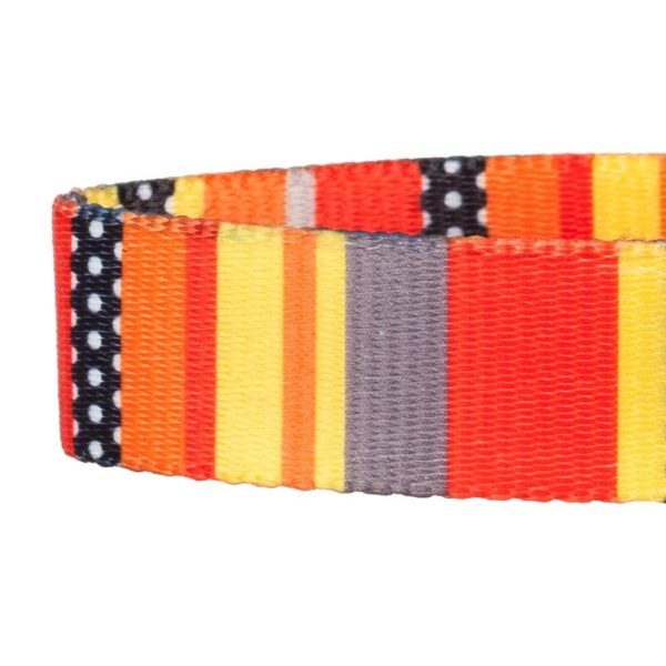 Blueberry Pet Dog Collar Nautical Flags Inspired Designer Basic Polyester Nylon Dog Collar 3