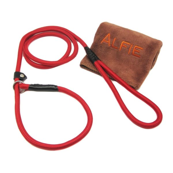 Avery Adjustable Slip Leash with Microfiber Fast-Dry Washcloth Red