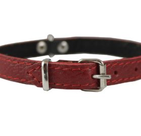 "Genuine Leather Felt Padded Dog Collar X-Small 11""x1/2"" Wide Fits 8""-10"" Neck, Chihuahua, Puppies"