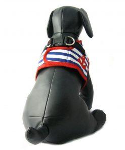 Alfie Couture Designer Pet Accessory - Vince Sailor Harness and Leash Set 6