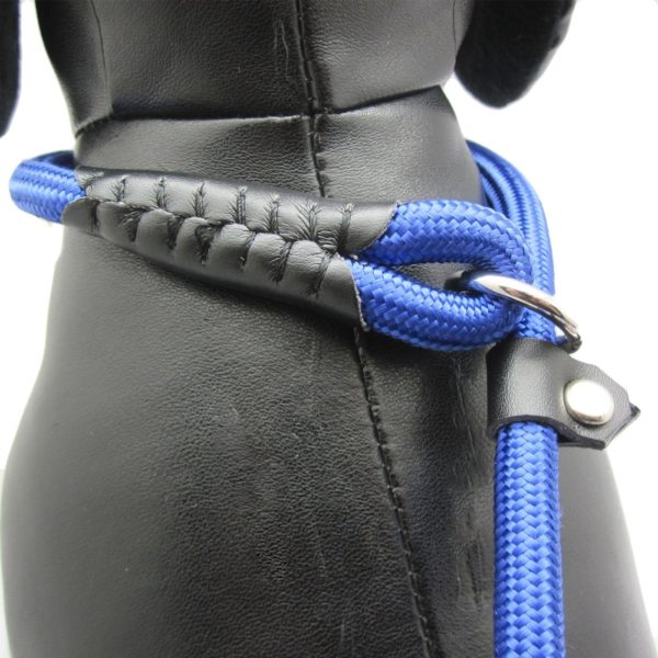 Avery Adjustable Slip Leash with Microfiber Fast-Dry Washcloth 4