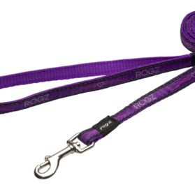 Rogz Fancy Dress Small 3/8-Inch Jellybean 6-ft Long Fixed Dog Lead, Purple Chrome Design