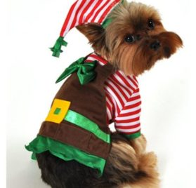 Anit Accessories AP1069-S Workshop Elf Dog Costume SMALL