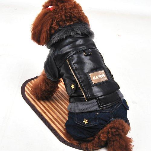 Wildforlife Leather Jacket & Jeans Dog Punk Winter Wear Coat-1
