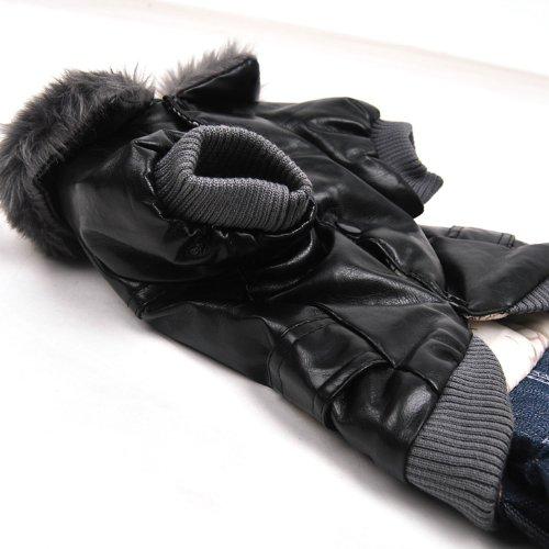 Wildforlife Leather Jacket & Jeans Dog Punk Winter Wear Coat-3