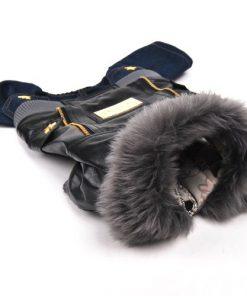 Wildforlife Leather Jacket & Jeans Dog Punk Winter Wear Coat-4