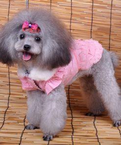 Fairy Denim Dog Dress for Dog Clothes Charming Cozy Dog Shirt Pet Dress Free Shipping-1