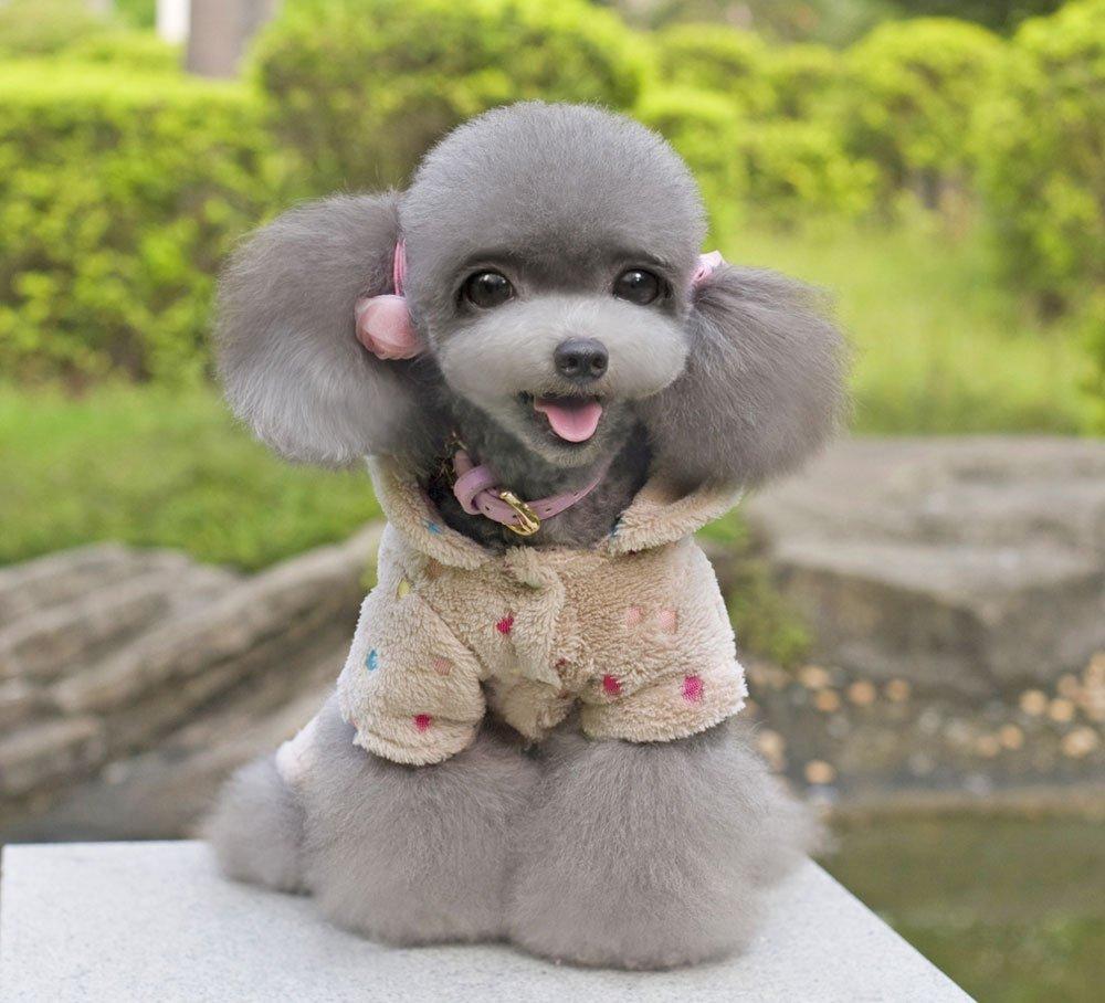 Best Canned Dog Food >> Pet Cat Dog Coat Jumper Jumpsuit Soft Velvet Multi-colored Dots Dog