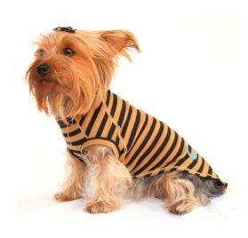 QPet Raglin Sleeve Pullover Pet T-Shirt-1