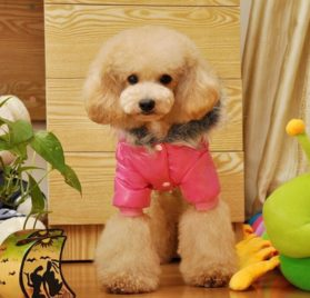 Lesypet Dog Puppy Winter Warm Hooded Coat Jacket Snowsuit Clothes Apparel-2