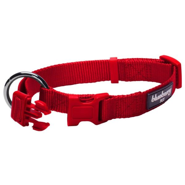 Blueberry Pet New Buckle Better Basic Classic Solid Dog Collar - 3