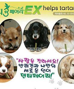 Forcans Denti 3fairy Dog helps tartar off 65g SS Dental Chew 1