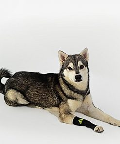 Canine Dogs Compression Sleeve Injury Support fatigue, joint, tendon and ligament laxity (instability) - 1