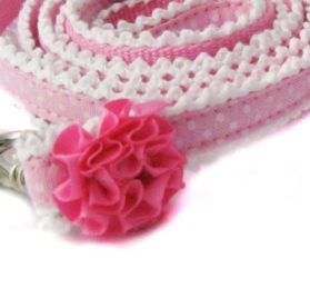 Paisley Ruffle Collar and Leash Set 3