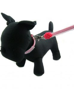 Paisley Ruffle Collar and Leash Set